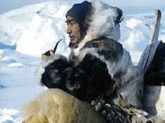 Die Klimaerwärmung könnte die gewohnte Umgebung der Inuit verändern.