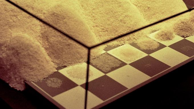 Reiskörner, sich stetig verdoppelnd, auf Schachbrett: Unmöglich zu erfüllender Wunsch.